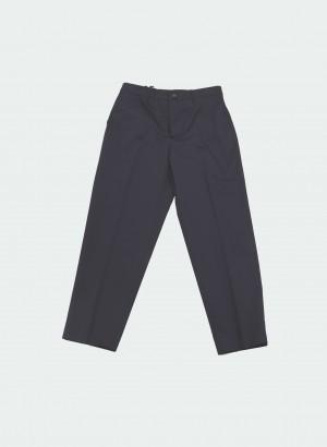 Berwich CHICCA CN101X-NAVY Pantalone blu